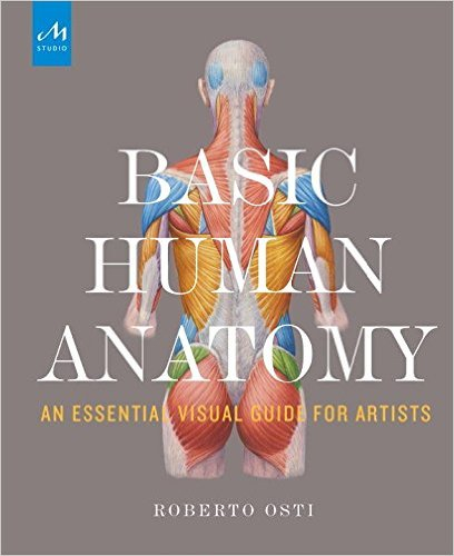 Basic Human Anatomy An Essential Visual Guide For Artists by Roberto Osti