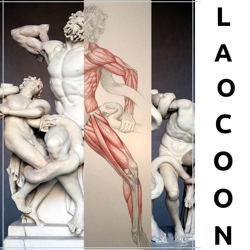 LAOCOON SKINNED