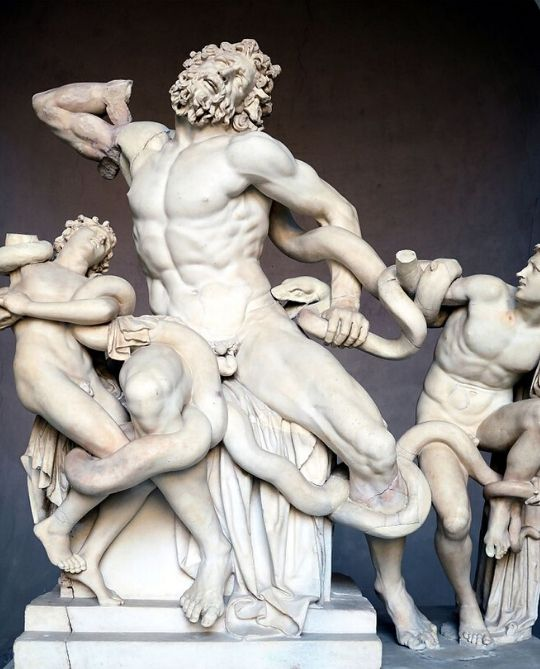 Michelangelo-Buonarroti-Laocoonte-Roberto-Osti-Summer-Workshop-Rome-2020-540x669