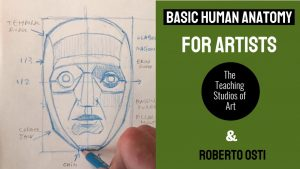 Basic Human Anatomy for Artists July 2020 @ the Teaching Studios of Art®