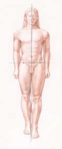 roberto-osti-not-contrapposto-drawing-fig-1-900x374