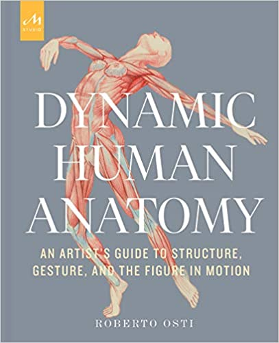 Dynamic Human Anatomy an artists guide to structure, gesture and the figure in motion by Roberto Osti