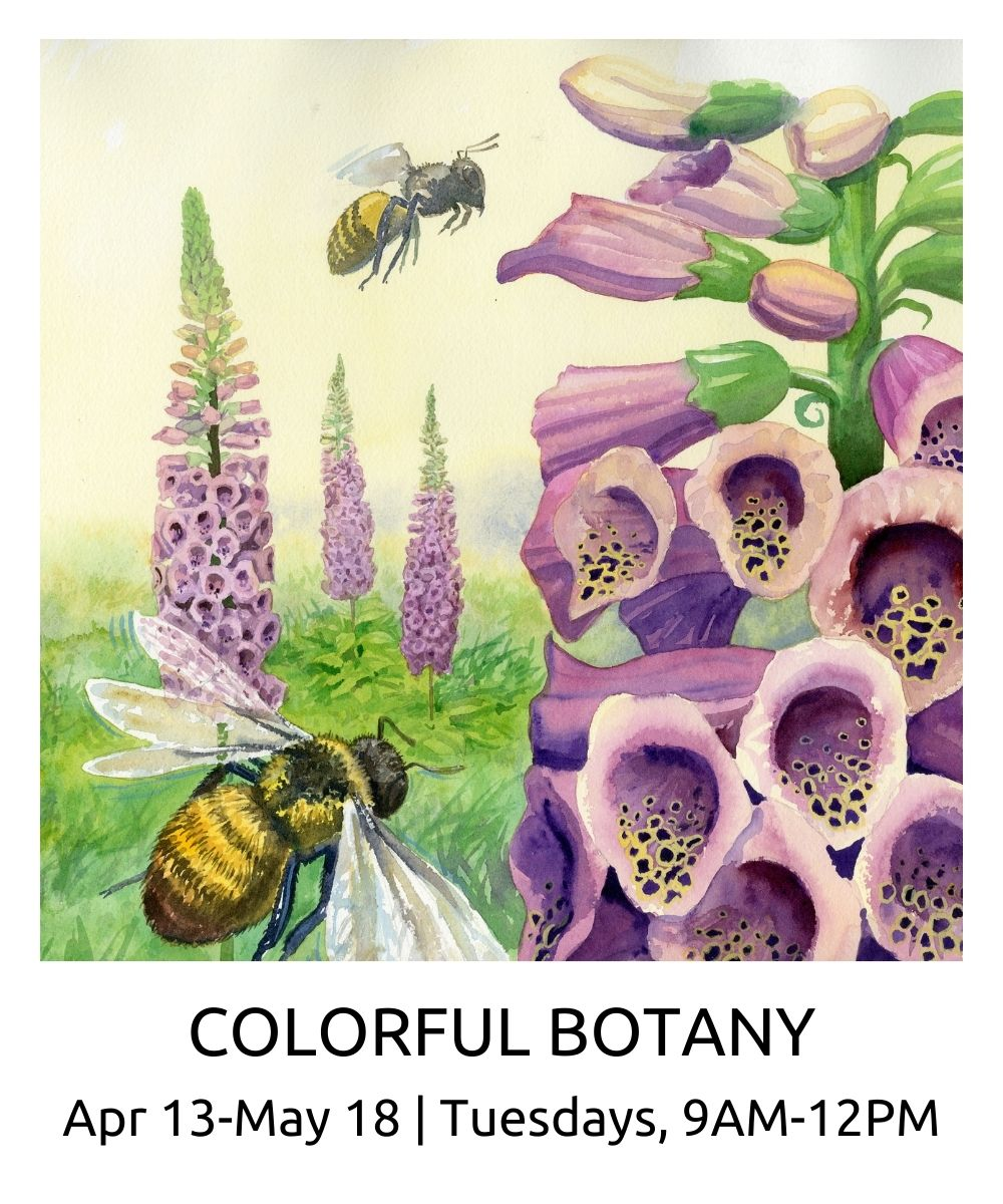 Watercolor Colorful Botany spring 2021 roberto osti new renaissance atelier april 13 May 18