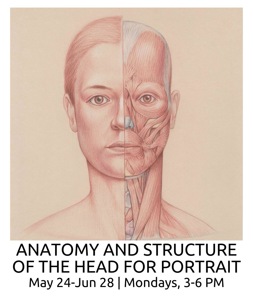 Anatomy and Structure of The Head for Portrait roberto osti new renaissance atelier spring 2021