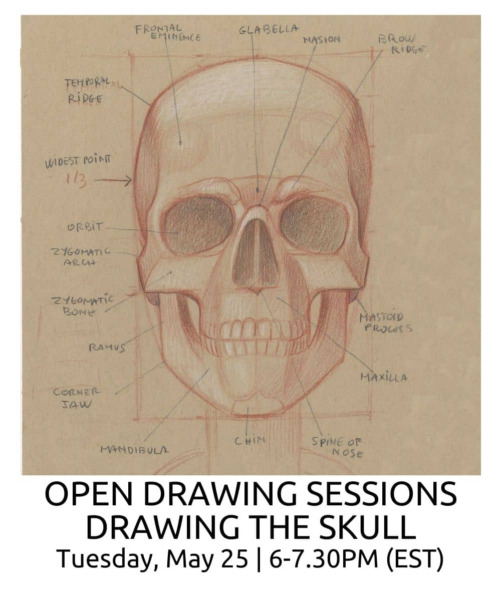 OPEN DRAWING SESSIONS DRAWING THE SKULL ROBERTO OSTI DRAWING NEW RENAISSANCE ATELIER (1)