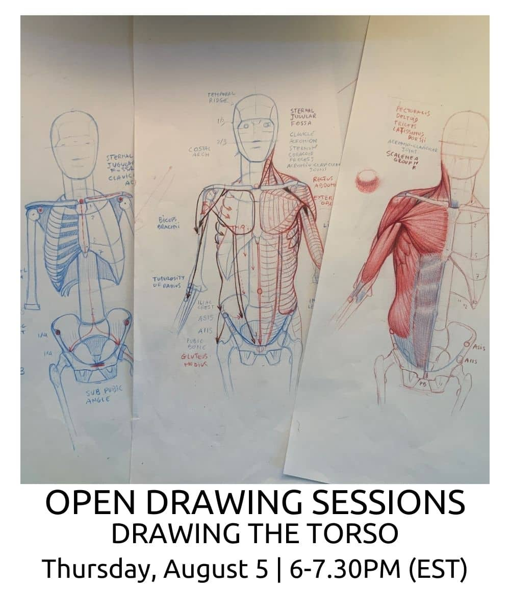 OPEN DRAWING SESSIONS 14 Drawing the torso ROBERTO OSTI DRAWING NEW RENAISSANCE ATELIER (4) (1)