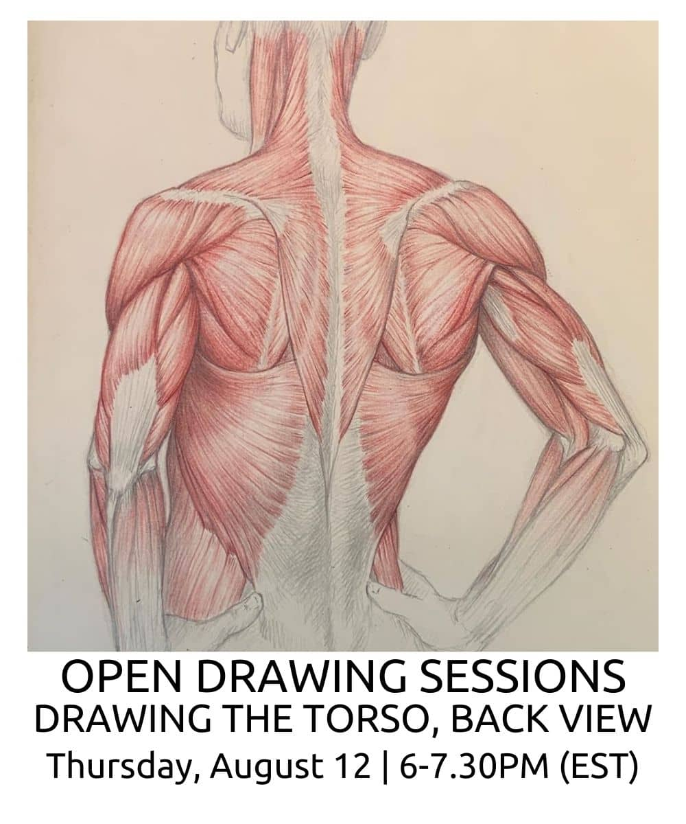 OPEN DRAWING SESSIONS 15 Drawing the torso back view ROBERTO OSTI DRAWING NEW RENAISSANCE ATELIER (1) (1)