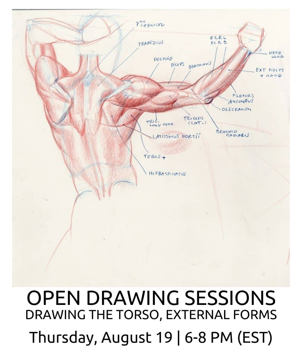 OPEN DRAWING SESSIONS 16 Drawing the torso EXTERNAL FORMS ROBERTO OSTI DRAWING NEW RENAISSANCE ATELIER (2)
